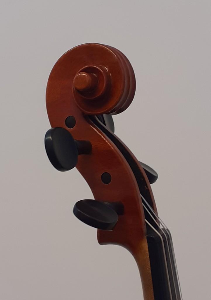 violine-maggini-klein-schnecke-schraeg-seitlich